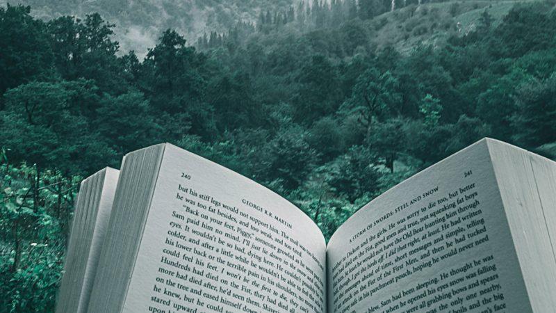 Offenes Buch in der Natur